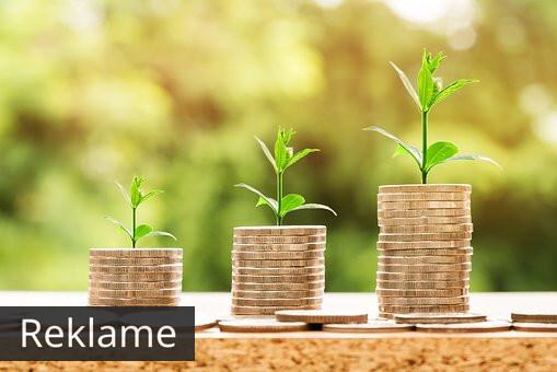 Fem tips til at spare penge i din virksomhed