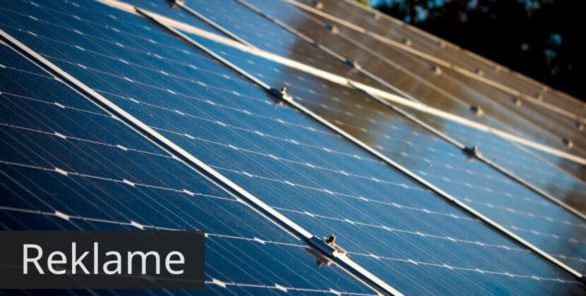 Derfor skal du have solceller til taget